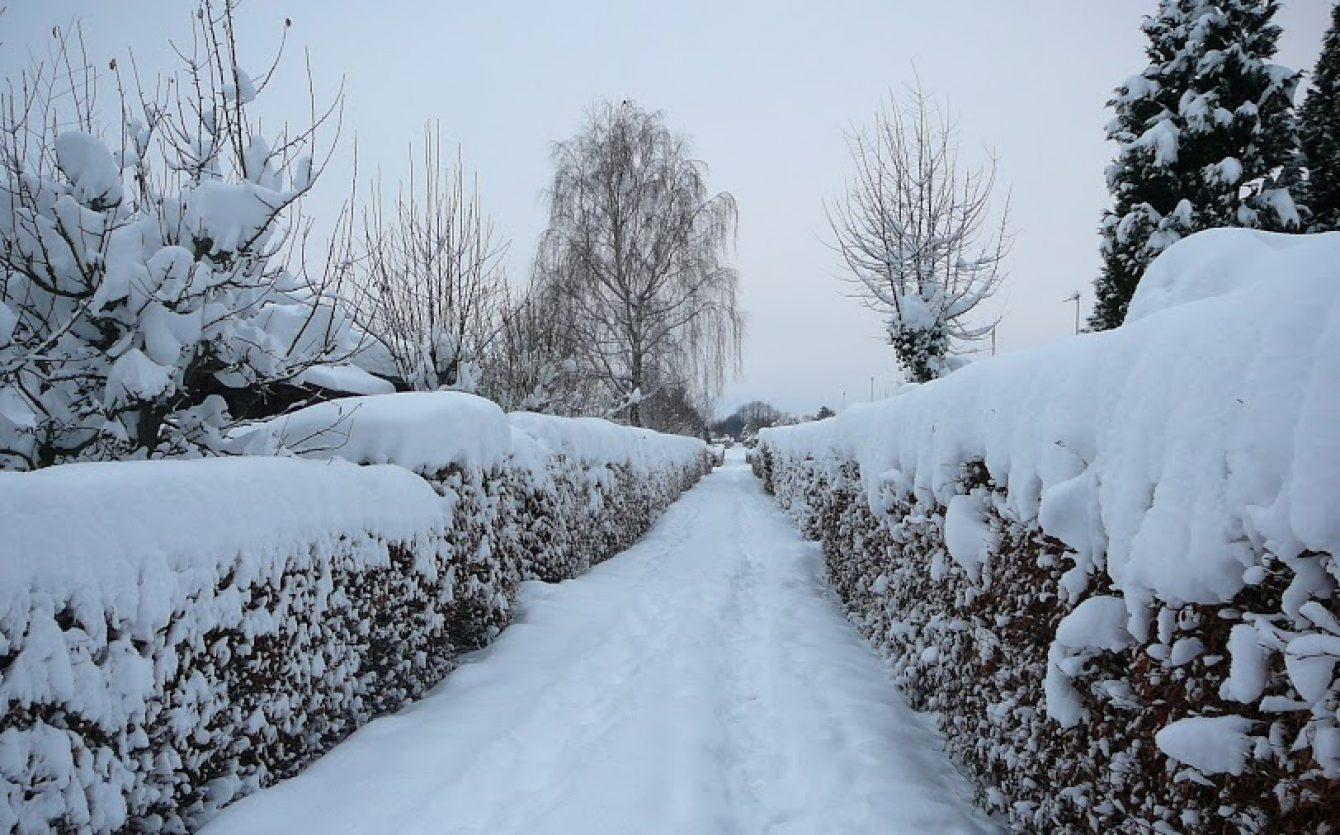 Sommerbyen Brøndgården